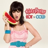 Couverture de l'album Hot N Cold (Remixes) - EP