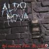 Couverture de l'album Blood on the Bricks