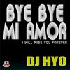 Couverture de l'album Bye Bye Mi Amor - Single
