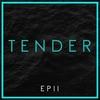 Couverture de l'album Tender EP II