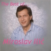 Couverture de l'album The Best of Miroslav Ilic