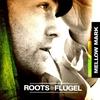 Couverture de l'album Roots & Flügel