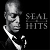 Couverture de l'album Seal: Hits (Deluxe Version)