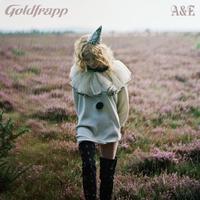 Cover of the track A&E