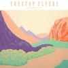 Couverture de l'album The Mountain Moves