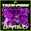 Couverture de l'album Tech Punk
