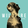 Couverture de l'album Wildfire