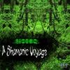 Couverture de l'album The Shamanic Voyage - EP