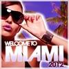 Couverture de l'album Welcome to Miami 2012