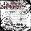 Cover of the album The Words Crossed Out