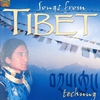 Cover of the track Losar