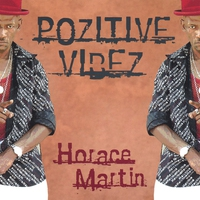 Cover of the track Pozitive Vibez