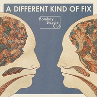 Cover of the track A Different Kind of Fix
