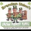 Couverture de l'album Irish Party Time