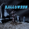 Couverture de l'album Halloween