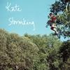 Cover of the album Stormking - Single