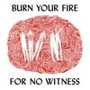 Couverture de l'album Burn Your Fire for No Witness