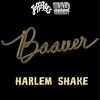 Cover of the album Harlem Shake - Single