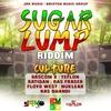 Couverture de l'album Sugar Lump Riddim (Culture)