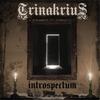 Cover of the album Introspectum