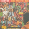 Cover of the album High Priest of Dub