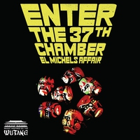 Couverture du titre Enter the 37th Chamber