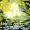 Couverture de l'album Dream of Fairies & Angels