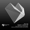Cover of the track Want U Back (Lucas Freire & Dante Pippi Remix)