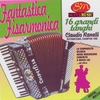 Cover of the album Fantastica Fisarmonica 16 Tanghi