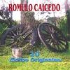 Cover of the album 20 Éxitos Originales