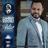 Cover of the track Homenaje a Camboy Estevez