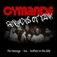 Cover of the track Renegades of Funk