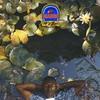 Couverture de l'album MANGO