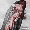 Couverture de l'album Soehrimnir