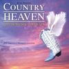 Couverture de l'album Country Heaven
