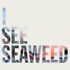 Cover of the album I See Seaweed