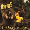 Cover of the album The Grass Is Green