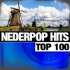 Couverture de l'album Nederpop Hits Top 100