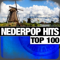 Cover of the track Nederpop Hits Top 100