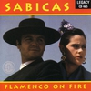 Couverture de l'album Flamenco On Fire