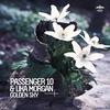 Cover of the album Golden Sky (Remixes) - EP