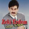 Couverture de l'album Gizli Yara