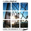 Couverture de l'album Living The Dream EP pt.2