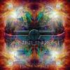 Couverture de l'album From Nibiru