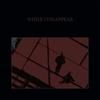 Couverture de l'album While I Disappear - EP