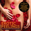 Couverture de l'album Erotic Feelings - 30 Sexy Lounge Tracks for Passionated Moments