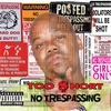 Cover of the album No Trespassing