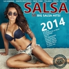 Cover of the album SALSA 2014 - 50 Big Salsa Romántica Hits (100% Amor Latino)
