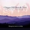 Couverture de l'album Indescribable: Blugrass Meets Worship