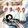 Couverture de l'album Furia Alacranera